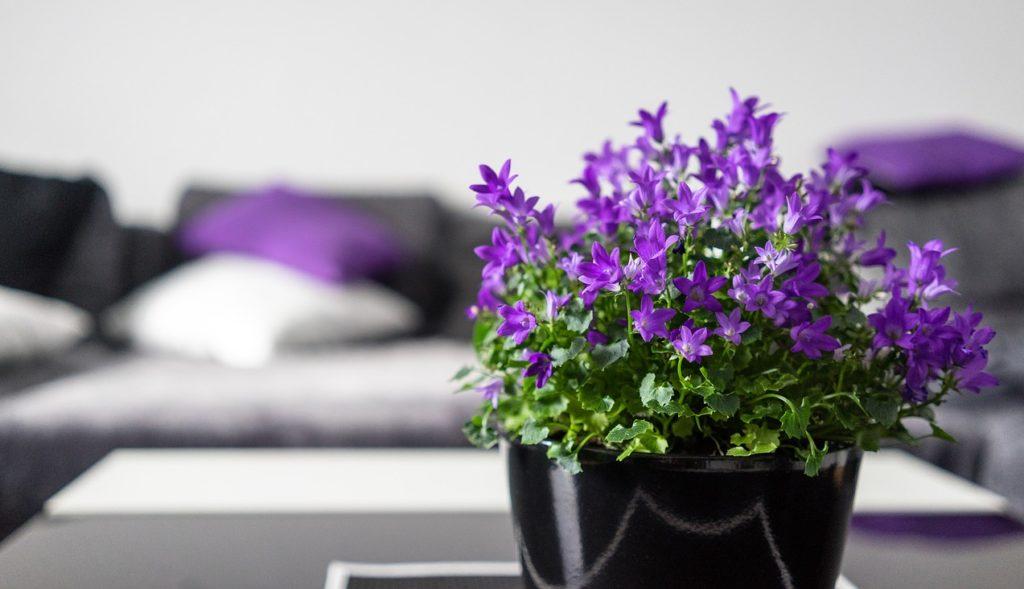 7 avantaje ale florilor artificiale in decorarea apartamentului