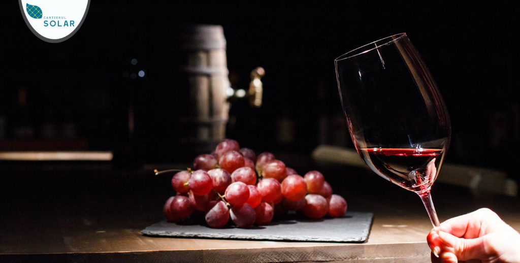 Adu-ti pasiunea pentru vinuri in noul tau apartament!