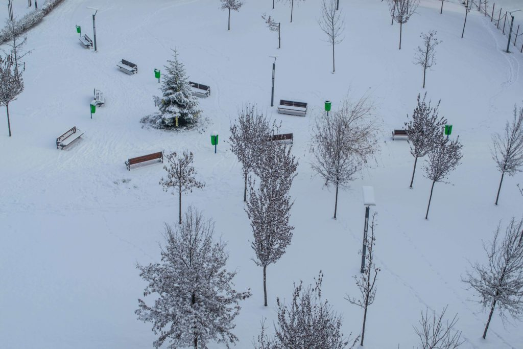 Cum alegi o pereche de schiuri daca iubesti iarna